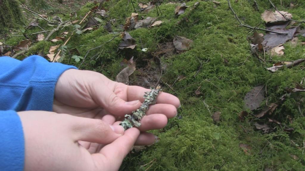 adam holds twiglet