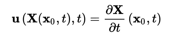 Eulerian Lagrangian equation from Wiki